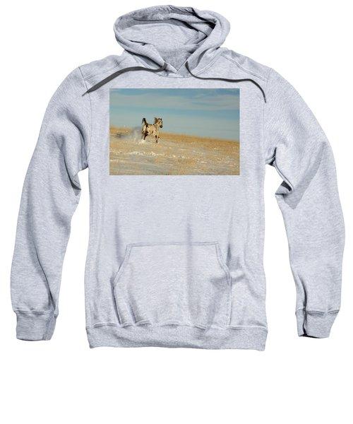 Winter Charger Sweatshirt