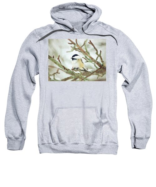 Winter Chickadee Sweatshirt