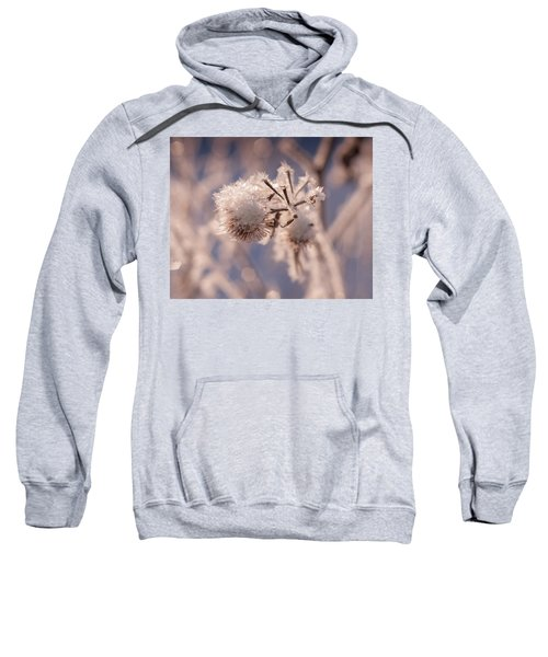 Winter Frost Sweatshirt