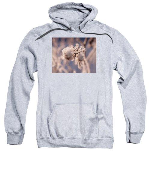Winter Frost Sweatshirt
