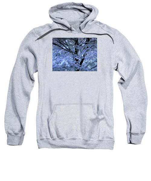 Winter Light Sweatshirt