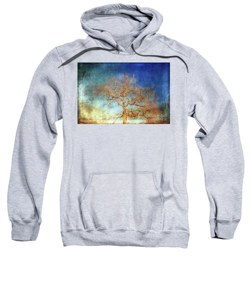 Winter Promise Sweatshirt