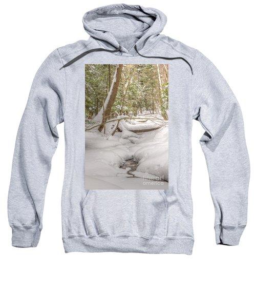 Winter Serenity Sweatshirt
