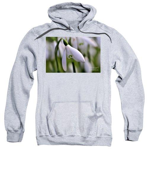 Winter Snowdrop Sweatshirt