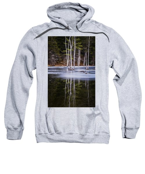 Winter Thaw Relections Sweatshirt