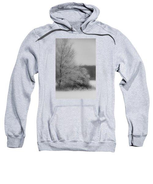 Winter Tree Sweatshirt