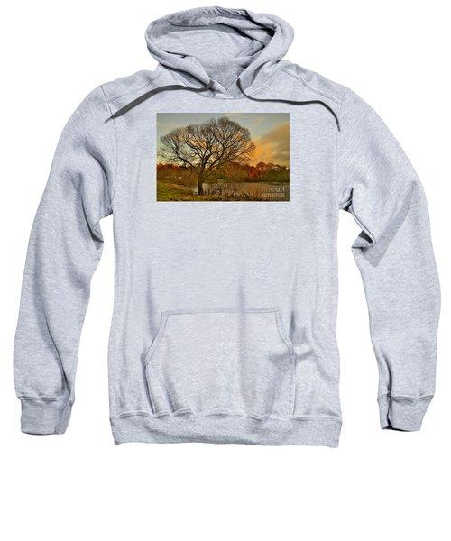Winter Tree On The River Tweed Sweatshirt