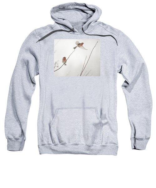 Winter Wind Surfing 2 Sweatshirt