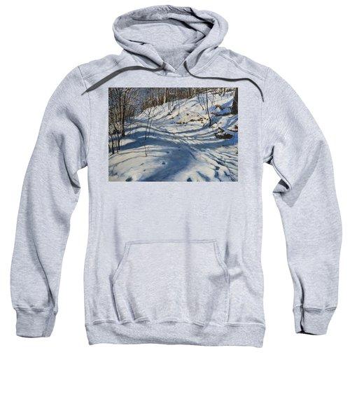 Winter's Shadows Sweatshirt