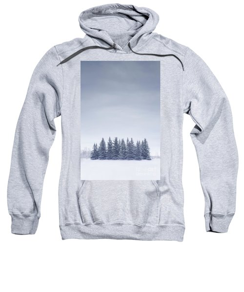 Winterscape Sweatshirt