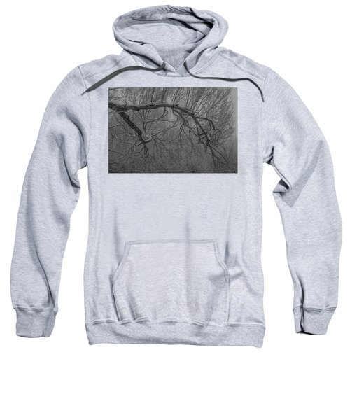 Wintery Tree Sweatshirt