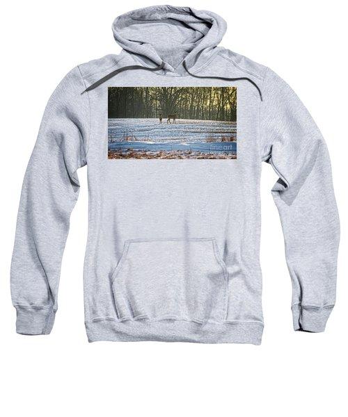 Wisconsin Whitetail Deer Sweatshirt