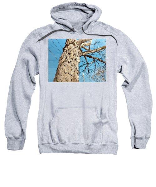 Witness Sweatshirt