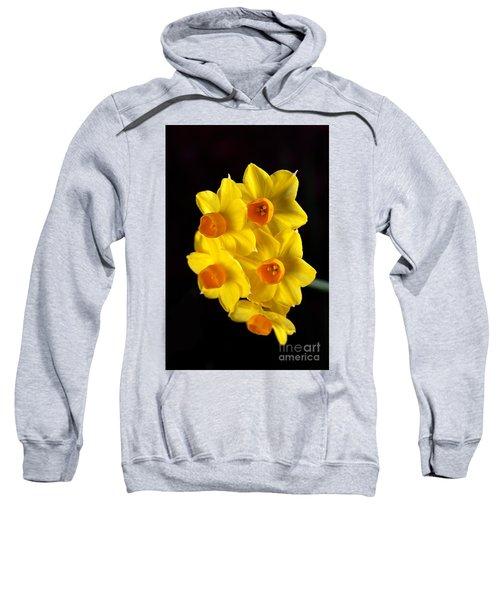 Wonderful Jonquils Sweatshirt