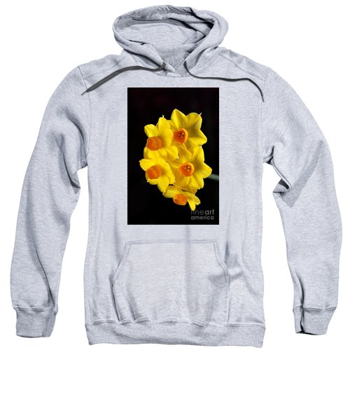 Wonderful Jonquils Sweatshirt
