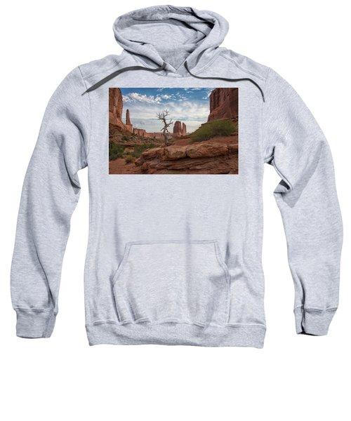 Wonders Along Park Avenue Sweatshirt