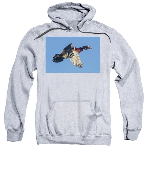 Wood Duck Flying Fast Sweatshirt