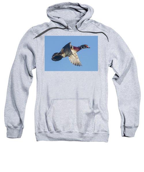 Wood Duck Flying Fast Sweatshirt