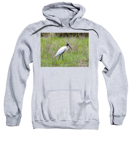 Wood Stork In The Marsh Sweatshirt by Carol Groenen