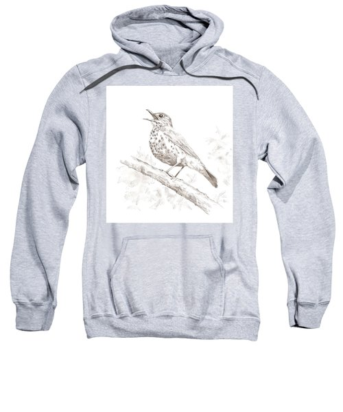 Wood Thrush Sweatshirt