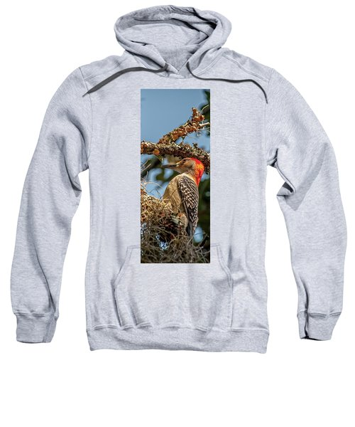 Woodpecker Closeup Sweatshirt