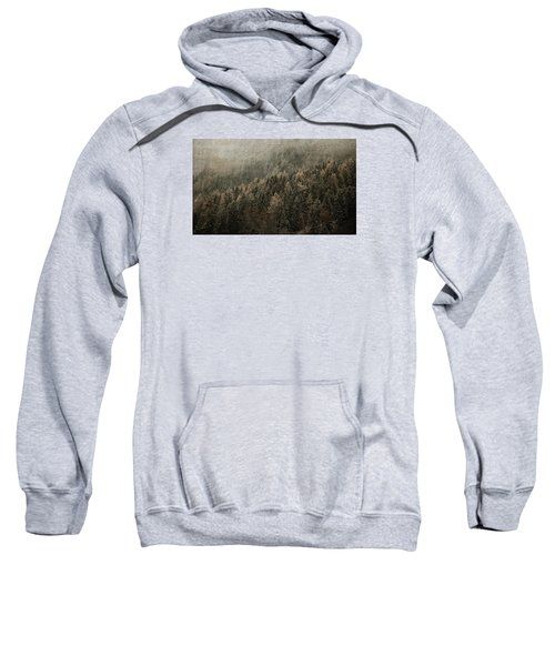 Woods In Winter Sweatshirt