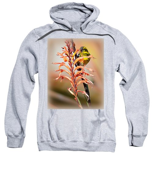 Yellow Bird Hi Sweatshirt