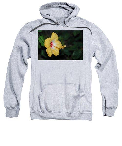 Yellow Bloom Sweatshirt