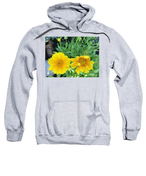 Yellow Coreopis Sweatshirt