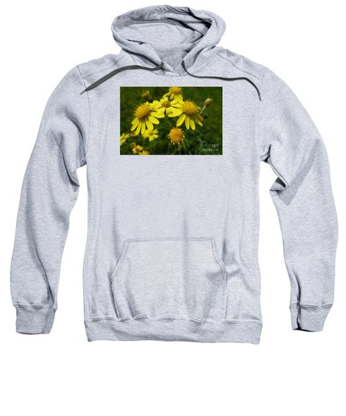 Yellow Daisies 2 Sweatshirt
