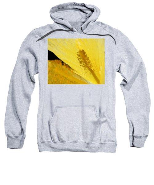 Yellow Flower - Hibiscus Shadow - Sharon Cummings Sweatshirt