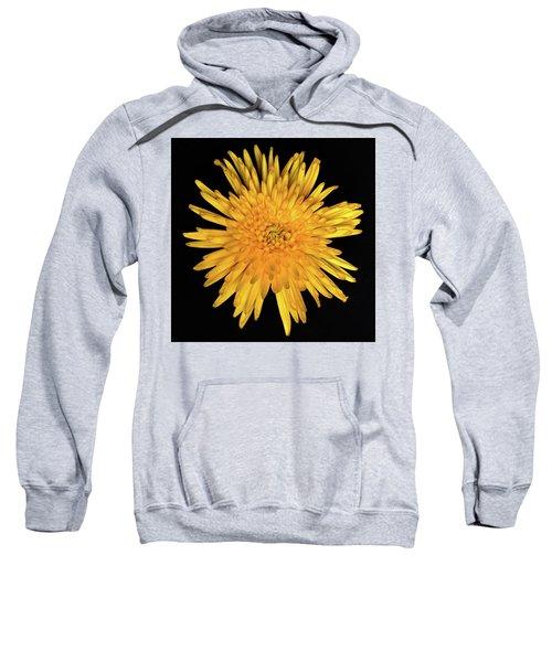 Yellow Flower Macro Sweatshirt