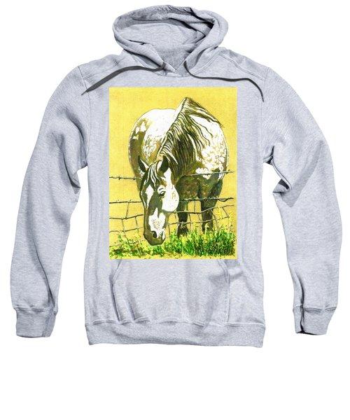 Yellow Horse Sweatshirt