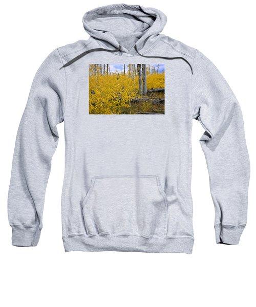 Yellow In Grand Teton Sweatshirt