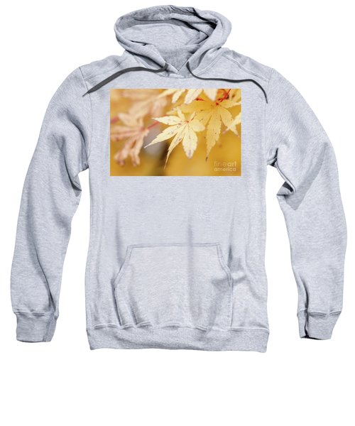Yellow Leaf With Red Veins Sweatshirt