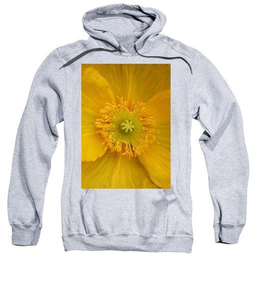 Yellow Poppy Flower Center Sweatshirt