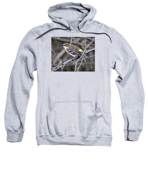 Sweatshirt featuring the photograph Yellow-rumped Warber In Fall Colors by Ricky L Jones
