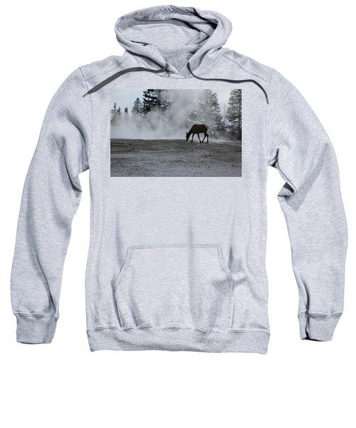 Yellowstone 5456 Sweatshirt