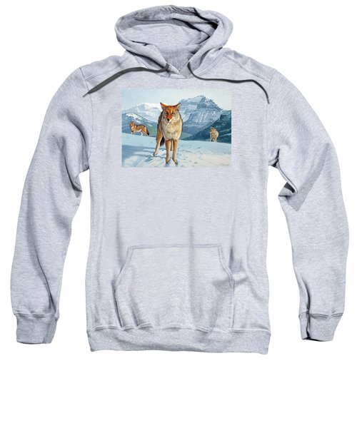 Yellowstone Coyotes Sweatshirt by Paul Krapf