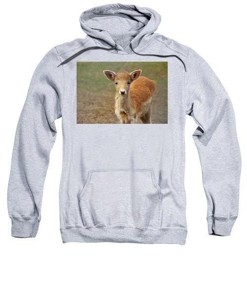 Young And Sweet Sweatshirt