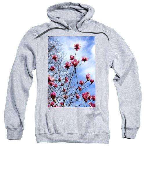 Young Blooms Sweatshirt