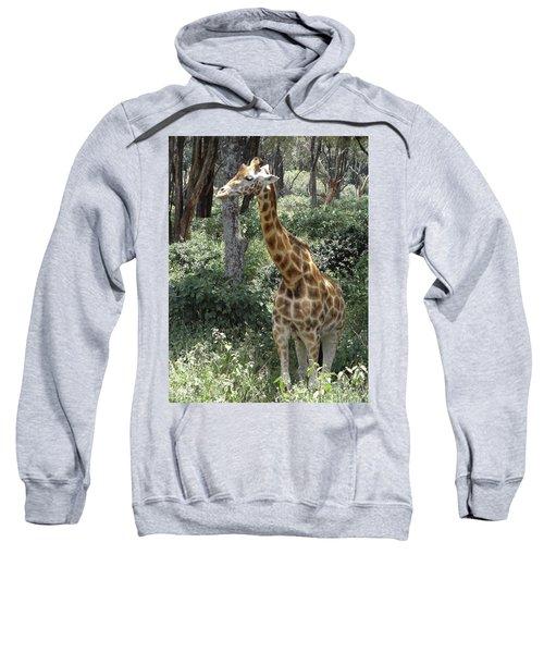 Young Giraffe Sweatshirt