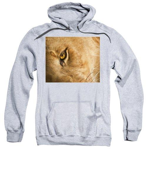 Your Lion Eye Sweatshirt