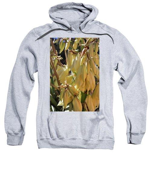 Yucca Bloom II Sweatshirt