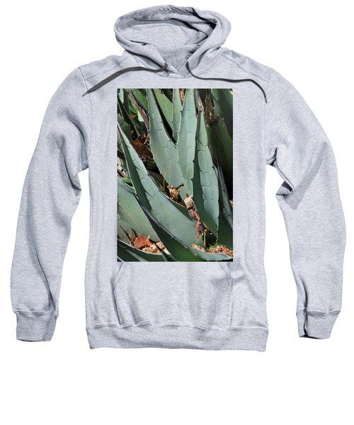 Yucca Leaves Sweatshirt