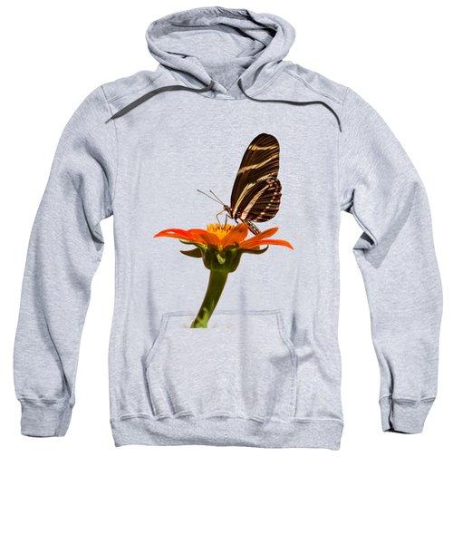 Zebra Longwing Sweatshirt