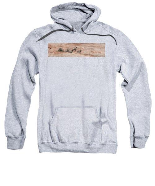Zion Family Sweatshirt