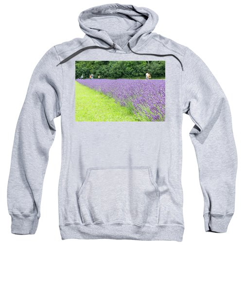 Blue Lavender Sweatshirt