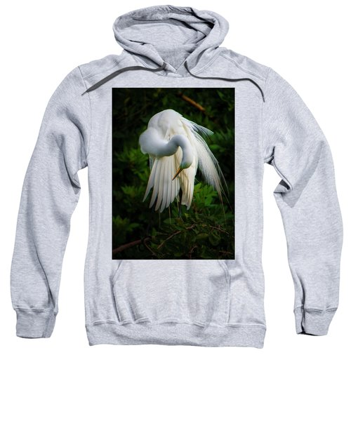 Breeding Plumage And Color Sweatshirt