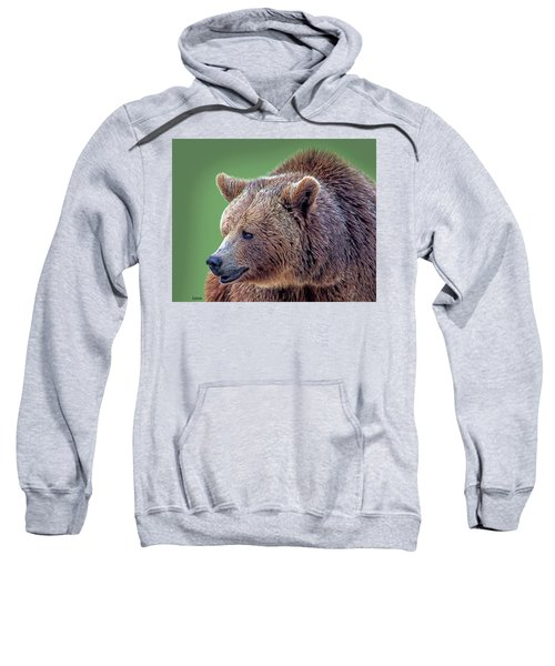Brown Bear 5 Sweatshirt